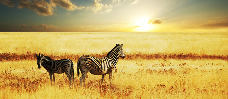 SOUTHERN AFRICA - A SETTING OF MAGNIFICENT BEAUTY