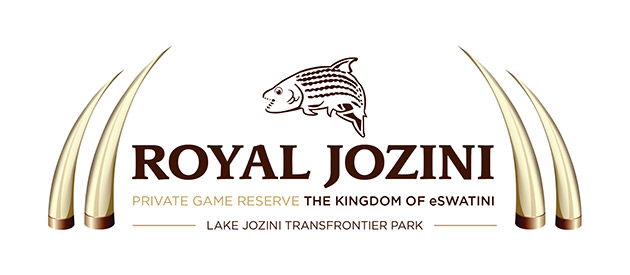 Royal Jozini - Bush Willow Lodge